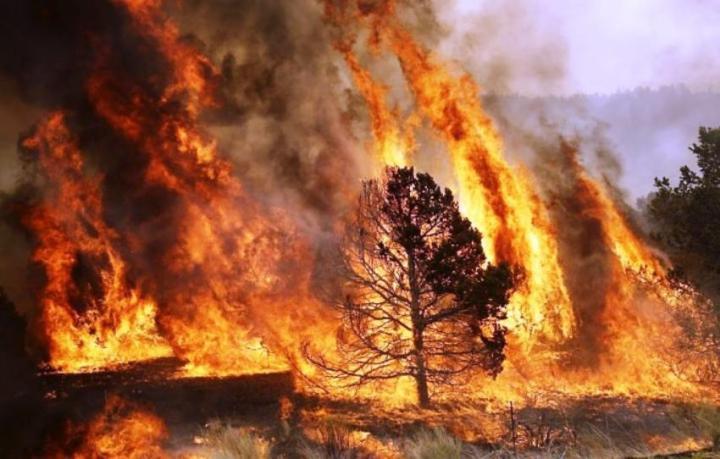 incendios2_1024x654_57ab463c21595